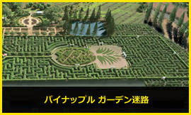 Dole Plantation Worlds Largest Maze